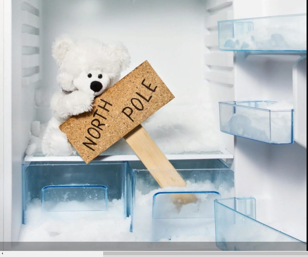 Как правильно разморозить холодильник атлант
